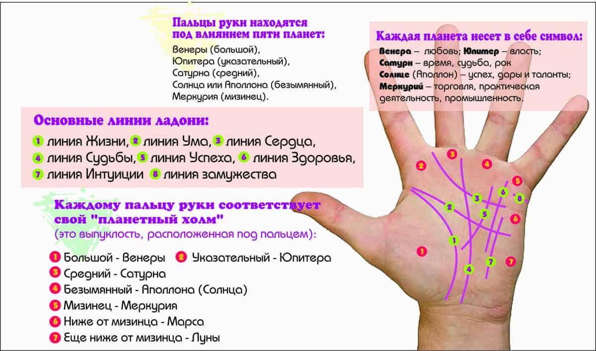 Линия Солнца на руке схема