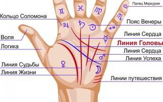 Как определить линию путешествий на руке