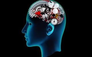 Виды психических процессов