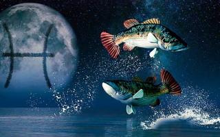 Луна в Рыбах – характеристика человека