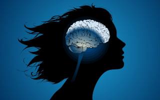 Виды перцепции, и ее роль в психологии